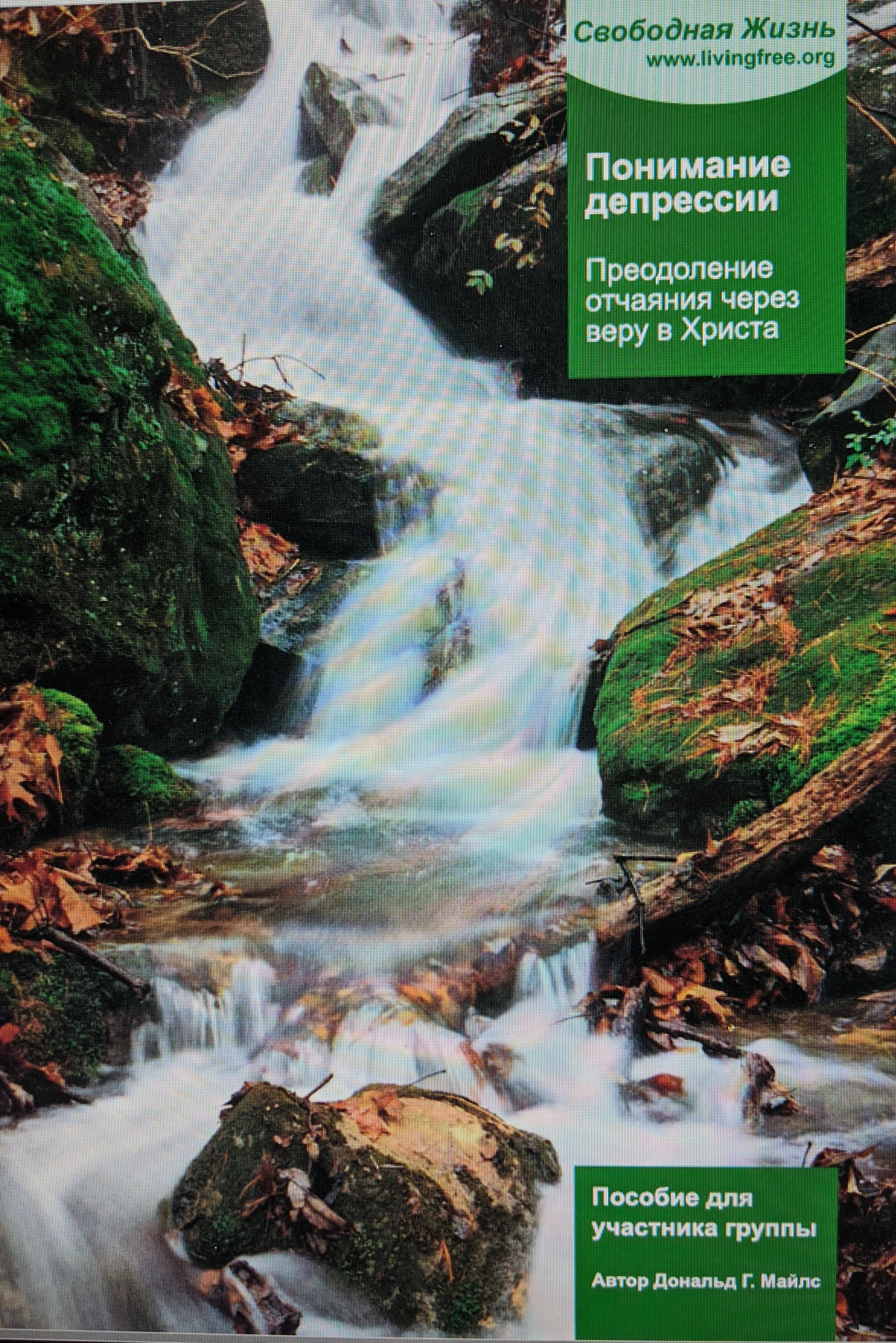 Russian Understanding Depression Group Member's Guide Download